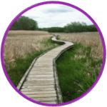 Appalachian Trail Takeaways Part 1
